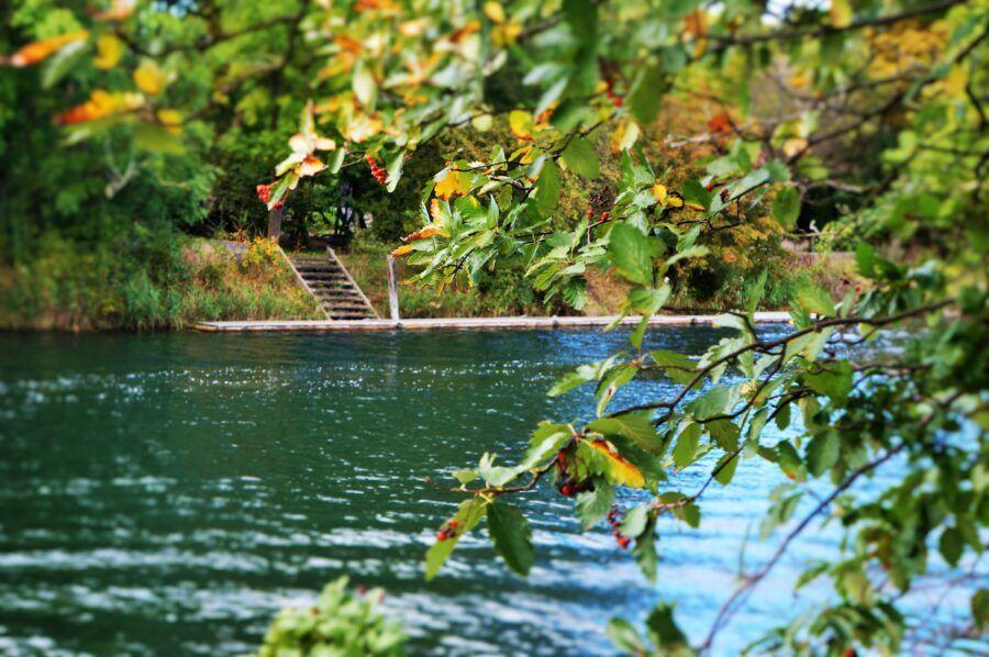 Tømmerflåden i efterårssol