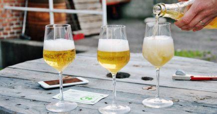 Kom med hos Cideriet (2/2): Vi piller skrællen af æblet