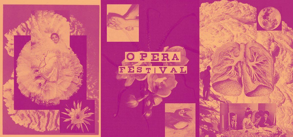 Operafestival