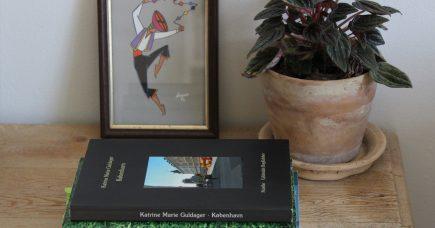 Hverdagsanbefalinger: noveller
