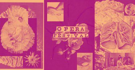 Fordyb dig i opera: en (gratis) guide til årets operafestival